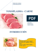 TOXOPLASMA - CARNE (Diapos) Arreglada