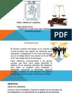 DERECHO-COLECTIVO-DEL-TO..pptx