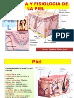 anatomiayfisiologiadelapiel-131114122848-phpapp02.pptx