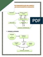 5. Conceptos Fundamentales Del Modelo Curricular Sociocognitivo Humanista
