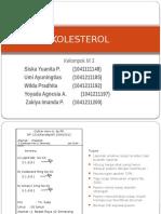 KOLESTEROL M3