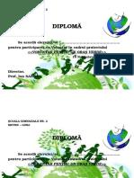 Diploma Voluntar Eco 2015
