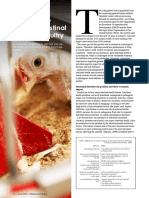 Nutritional strategies to support intestinal health in poultry