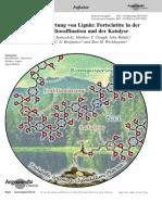 2016 Rinaldi - Wege zur Verwertung von Lignin _Fortschritte in der Biotechnik, Raffination und Katalyse.pdf