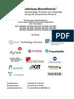 2014 Dechema Pilotprojekt_Lignocellulose_Bioraffinerie_Schlussbericht.pdf