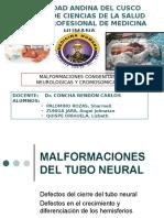 Malformaciones Del Tubo Neural