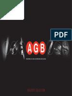 AGB Production Program 2010-2011