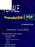 Female Reproductive System-ss