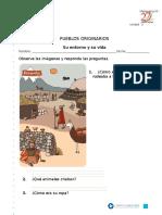 Entorno Pueblos Originarios (1)