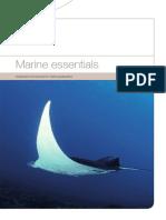 MarineEssentialslowres.pdf