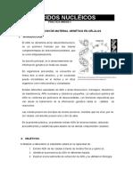 Practica de Laboratorio Acidos Nucleicos y Nucleo
