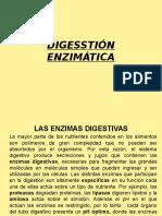 2. DIGESTÓN ENZIMÁTICA