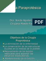 4 Cirugía Paraprotésica