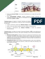 Membrana Plasmática y ADN