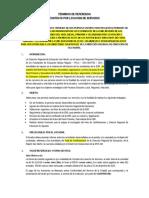 TDR HANS.docx