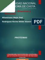 Presentacion Monografia Proteinas, Vitaminas y Minerales