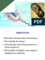 eStrutUra BacterianA