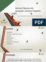 Caixeiro Viajante - Solução Utilizando a Heurística de Colônia de Formigas (Java)