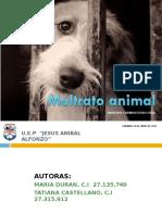 MALTRATO ANIMAL 1.ppt