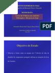 Livres de 9 Metros-Utilização e eficácia em Jogo (www.paulojorgepereira.blogspot.com)