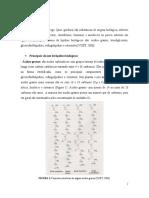 Relatório 06 - Oléo e Saponificação
