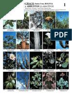 arboles-y-arbustos-del-chaco-bolivia.pdf