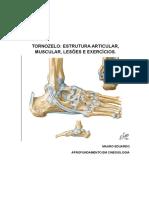 ocomplexoarticulardotornozelo-121117112620-phpapp01.docx