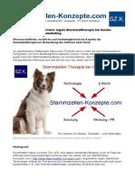 Stammzellen als Arthrosemittel für Hunde