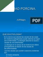 sanidad-porcina1