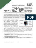 Guia Polimeros y Biomoleculas 2013