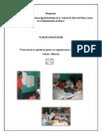 Informe Plan de Capacitacion Género