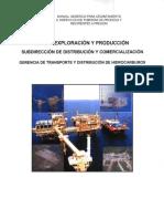 Manual Genérico Para Levantamiento d Tuberías d Proceso y Recip a Presión 259 HOJAS