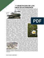 CLIMA Y VEGETACION DE LOS PARAMOS ECUATORIANOS.docx