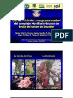 Uso_Trichoderma_spp_control_complejo_Mon.pdf