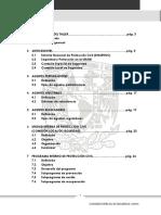 Lineamientos Para PIPC