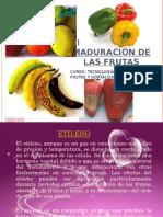 2.- Acción Del Etileno en LaJHUGYJF Maduración de Las FRUTAS