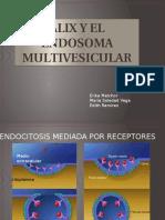 Alix y El Endosoma Multivesicular