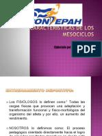 p curso CARACTERISTICAS DEL MESOCICLO.pdf
