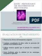 Terminacin Terapia y Prevencion Recaidas