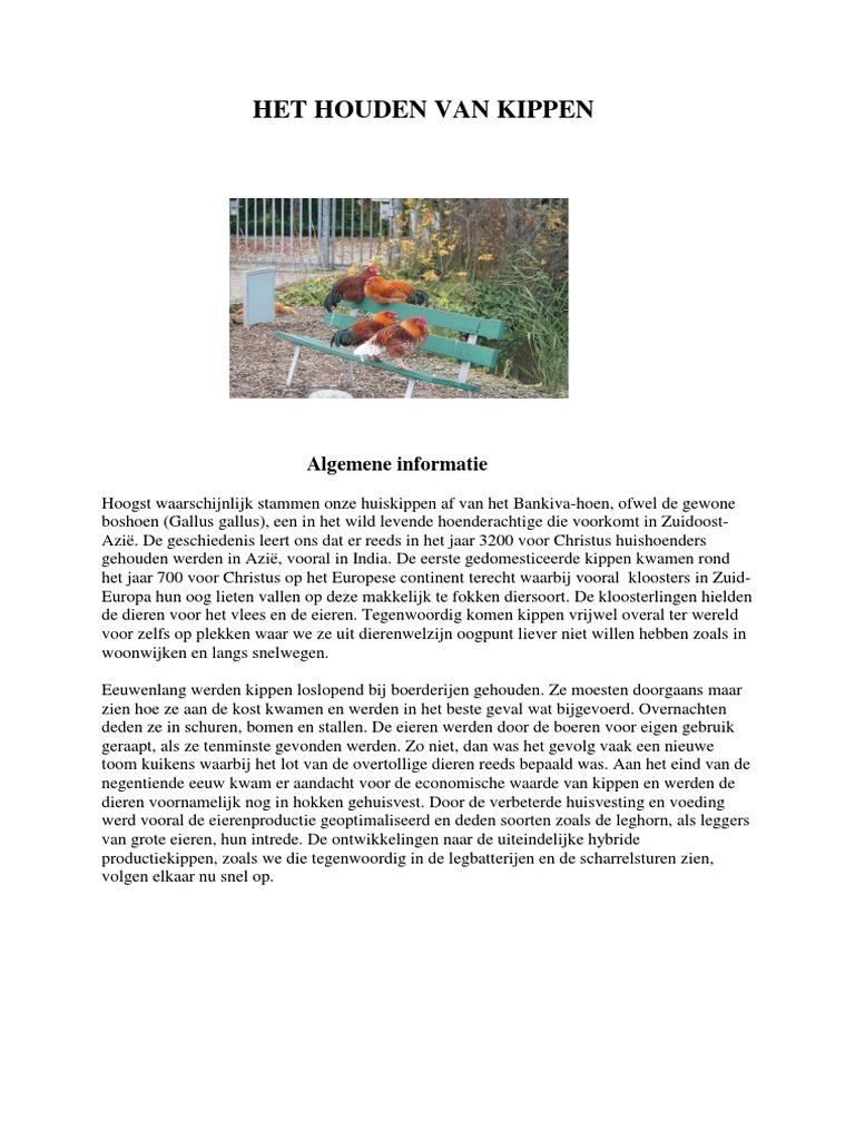 kippen info site.pdf