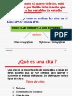 citas apa 2010.pdf