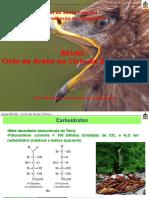 Aula-Ciclo-de-Krebs-ou-Ciclo-do-ácido-cítrico.pptx