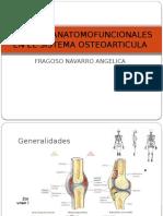 Cambios Anatomofuncionales en El Sistema Osteoarticula