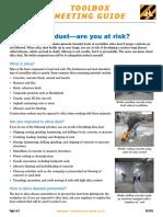 Tg07 41 Silica Dust PDF En