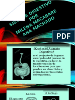 Diapositiva El Sistema Digestivo