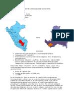 PUENTE CARROZABLE DE HUARAYPATA.docx