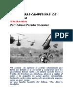 Las Guerras Campesinas de Villarrica.tercera Parte