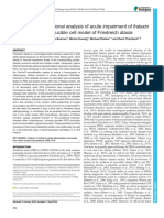 Time-resolved Functional Analysis of Acute Impairment of Frataxin Expression in an Inducible Cell Model of Friedreich Ataxia.