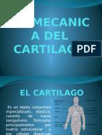 BIOMECANICA DEL CARTILAGO.pptx