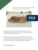 Dalla preistoria al medioevo, la Storia della Scarpa